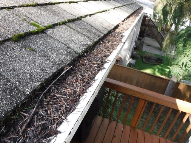 debris on roof- Is your ready to take the  grind of winter season?