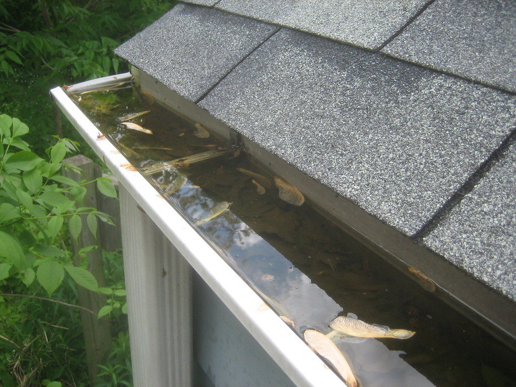 keep your gutters clean- make your roof summer ready